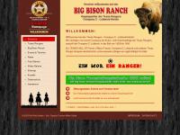 big-bison.de
