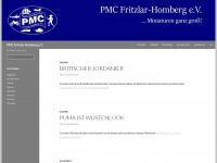 pmc-fritzlar-homberg.de