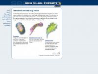 seaslugforum.net