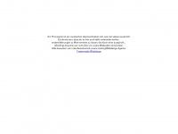 phonogram.de Webseite Vorschau