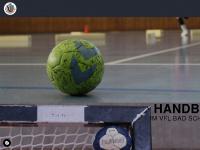 schwartau-handball.de