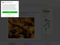 ce-timber.de