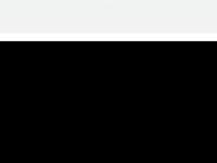phoenixstudios.de Webseite Vorschau