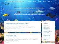 Unterwasserclub-straubing.de