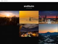 burst-ulm.de