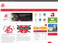 swiss-baseball.ch