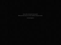sachsenfighters.de