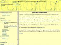 Ao1997.privat.t-online.de