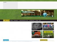 kvf-mittelsachsen.de Webseite Vorschau