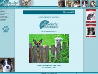 spanische-waisenhunde.de