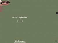 life-is-life-kennel.de