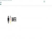 fruehe-chancen.de Webseite Vorschau