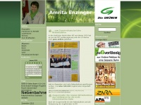 amritaenzinger.net Webseite Vorschau