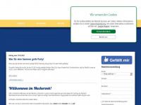 ihs-fasching.de