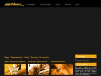 pinball-dreams.com