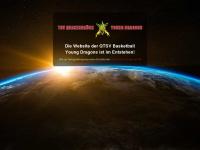 qtsvbb.de Webseite Vorschau