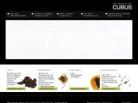 Cubus.at