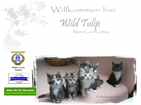 wild-tulip.de