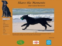 share-the-moments.de