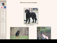 Hovi-grasberg.de