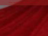 kvl2005.de Webseite Vorschau
