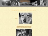 tierkommunikation.info