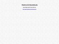 Elektronik-bastelbude.de
