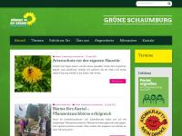 gruene-schaumburg.de