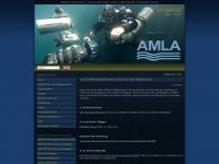 amla-kiel.de Webseite Vorschau