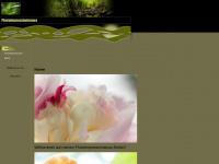 photoimpressionismus.de Webseite Vorschau