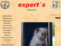 Hlbirma-experts.de