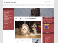 amazing-beardies.de Webseite Vorschau