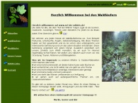 ruf-der-wildnis.de