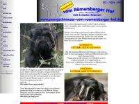 zwergschnauzer-vom-roemersberger-hof.de