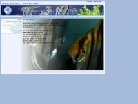 pterophyllum.de