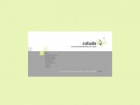 coludo.de Webseite Vorschau