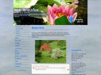 4mi.at Webseite Vorschau