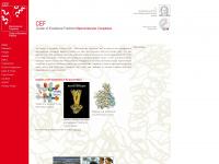 cef-mc.de Webseite Vorschau