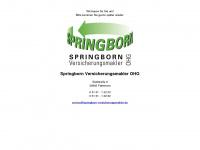 springborn-versicherungsmakler.de