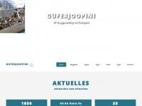 guferjoopini.ch