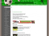 fussballweltmeisterschaft.de Webseite Vorschau