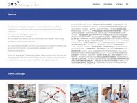 qm-mit-system.de Webseite Vorschau