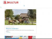 a3kultur.de