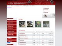 mein-spinnennetz.ch