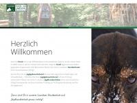 lausitzer-hundeschule.de