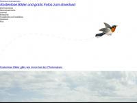 photomakers.org Webseite Vorschau