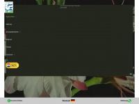 zp30.com.py Thumbnail