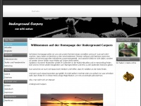 underground-carpers.de Thumbnail
