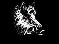 Kampfdrecksau.de