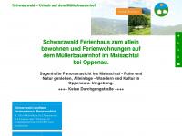 ferienhaus-schwarzwald.com